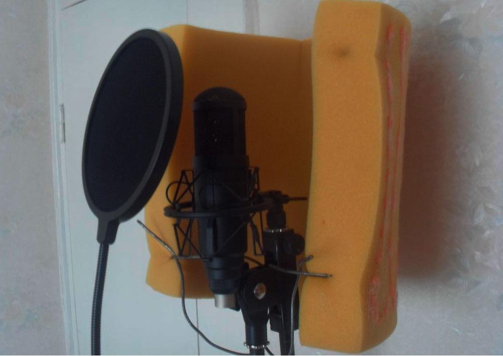 Home mic